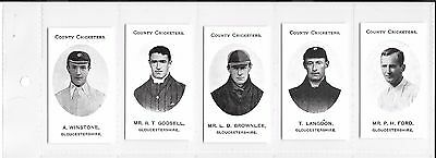 TADDY:COUNTY CRICKETERS - GLOUCESTERSHIRE: Nostalgia Reprint: #05