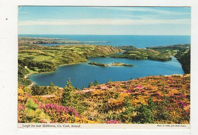 Lough Ine Near Skibbereen Co Cork Ireland 1979 Postcard 879a