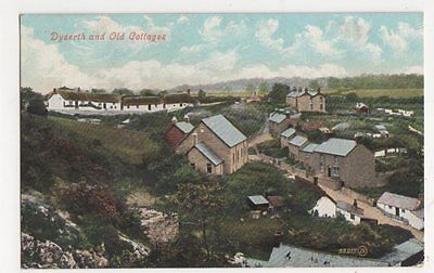 Dyserth & Old Cottages 1908 Postcard, B329