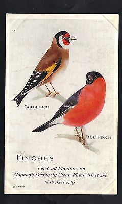 Postcard - Capern's Bird Foods - Finches