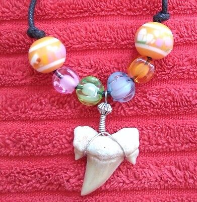 Fossil Shark Tooth Necklace - 019