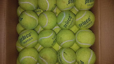 32 used Prince Trainer tennis balls, job lot, balls (or dog toys)