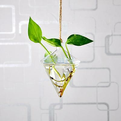 Diamond Hanging Glass Plants Flower Vase Hydroponic Container Home Decor
