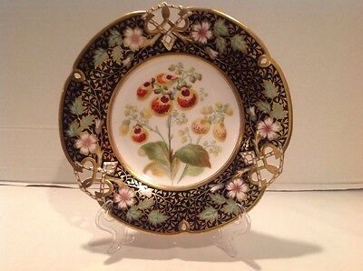 Fine Antique Porcelain Hand Painted Cobalt & Gilt Cabinet Plate Botanical Flower