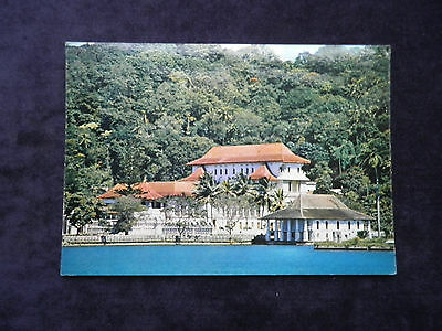 Vintage J. Arthur Dixon Postcard Ceylon Colombo - The Temple Of The Tooth, Kandy