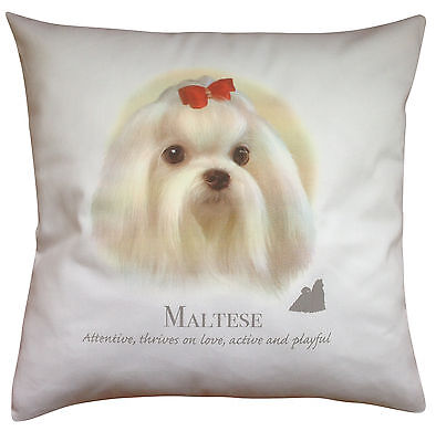 Maltese Dog | 100% Cotton Cushion Cover and Zip | Howard Robinson | Perfect Gift