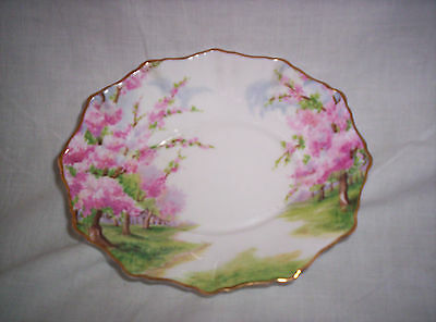 Royal Albert  Oval Dish / Blossom Time