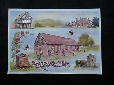 """Postcard Of Holiday Cottages Bosbury Herefordshire """"the Bee House"""" & """"the Hive"""""""