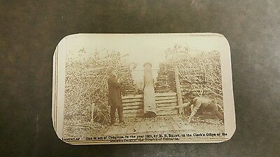 Rare Civil War Image of a Decoy Cannon or Quaker Gun Brady