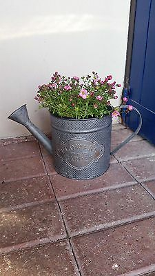 Vintage Style Metal Decorative Watering Can Planter