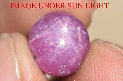 8.80 Cts NATURAL STAR RUBY/SAPPHIRE BEAUTIFUL UNHEATED UNTREATED {VIDEO} F2727