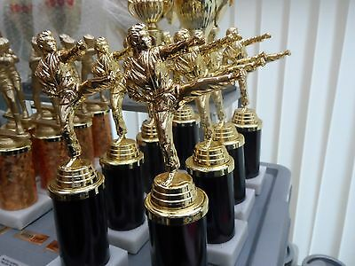 Joblot Of 8 - Karate -  Trophies In Black/gold   - Free Engraved Plates