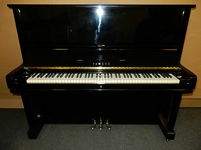 Yamaha U3 Upright Piano.stunning Sound And Touch With 5 Year Guarantee