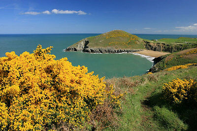 Easter in West Wales Holiday Cottage + Hot Tub! Sat 1st - Sat 8th April - £425!!
