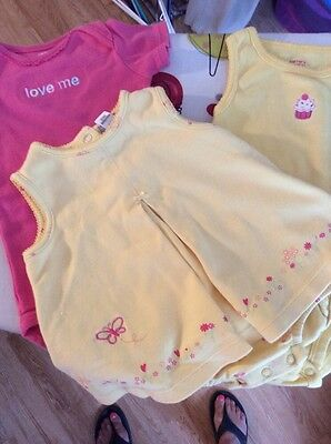 Lot of 3 Baby Girl Clothes ~ 9 Months ~ Carters