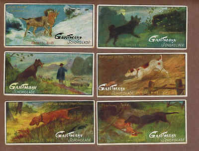 HUNTING DOGS: Complete Set of Rare German GARTMANN CHOCOLATE Cards (1901)