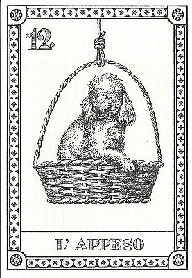 1990 LE Dog Art Italy Menegazzi Single TAROT Card BICHON FRISE POODLE l'Appeso