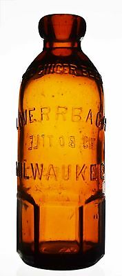 Very Rare! Louis Werrbach Paneled Base Hutch Ginger Beer Bottle, Milwaukee, Wi