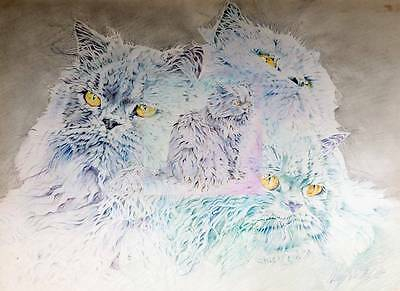 LUCY SU SIGNED ORIGINAL Drawing CATS STUDY 1980 Childrens Book Illustrator