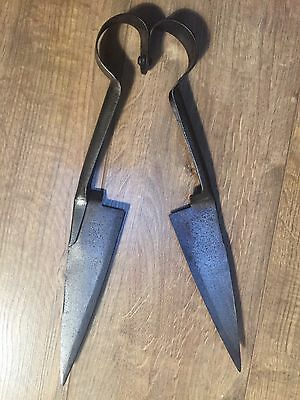 "Vintage Ward & Payne No 250 Sheep Shears Topiary Scissors 14"" VGC For Age"
