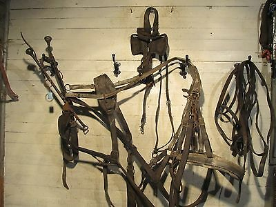 Horse Single Harness With Lines And Bridle