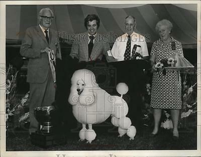 Press Photo Poodle in Dog Show - neo24986