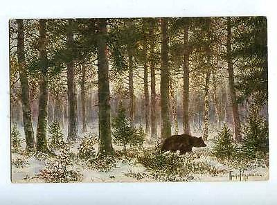 183697 RUSSIA MURAVIEV lonely in forest hunt BEAR Lenz #233