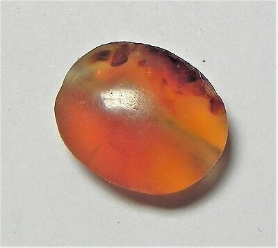 Zurqieh -Af1734- Ancient Egypt , New Kingdom Carnelian Bead. 1400 B.c