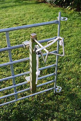 Sheep / Goat / Calf Headstock