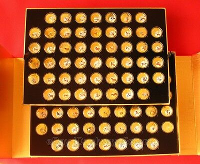 100pcs Year of the Horse Lunar Zodiac Colored 24K Gold Plated Coins With Box