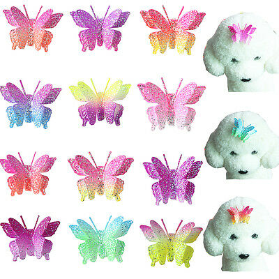 Boutique Dog Hair Bows with Clips Beautiful Butterfly Pet Dog Hair Accessories