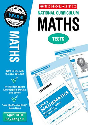 Maths Test - Year 6 (National Curriculum Tests) - Paperback NEW Paul Hollin (Au