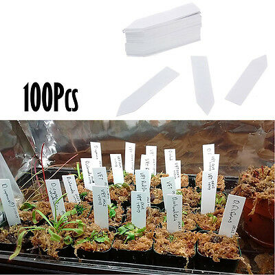 100Pcs Garden Plant Pot Markers Plastic Stake Tags Nursery Seed Labels TOOLS
