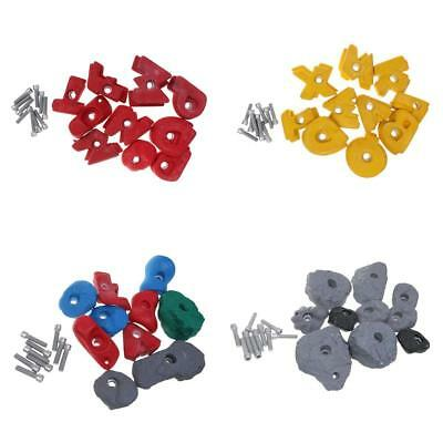 10Pcs/Set Screw On Rock Climbing Wall Hand Feet Holds Bolt On Holds w/ Hardware