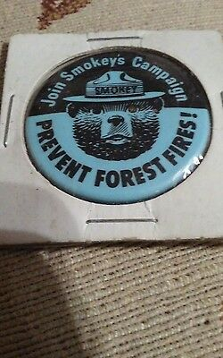 Join-Smokey-Bear-Smokeys-Campaign-Prevent-Forest-Fires-Park-Service-Blue-Pin