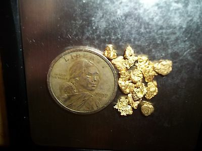 4.30 Grams Alaska Natural Gold Nuggets, 13 Of Our Best Nuggets,  Free Capsule!