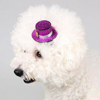 New Dog Hair Clips Small Top Hat Hairpin Shiny Pet Cat Headwear Accessories 5PCS