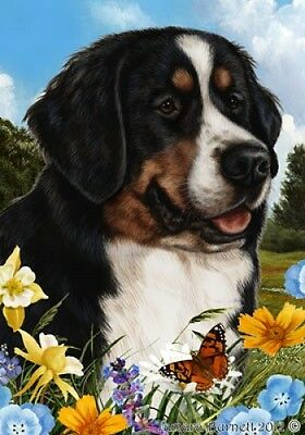 Large Pick 3 Flag Set - Bernese Mountain Dog