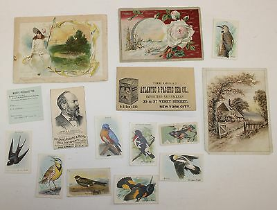 Antique Victorian Advertising Trade Cards Tea Lion Coffee Baking Soda Birds