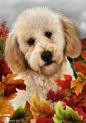 Garden Indoor/Outdoor Fall Flag - Buff Labradoodle 132721