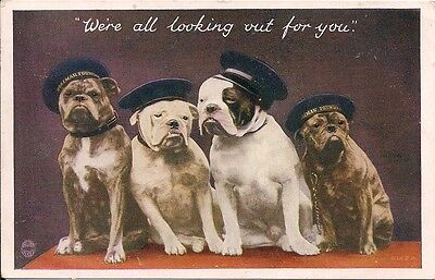 "CUTE BULLDOG Postcard ""We're all looking out for you"""