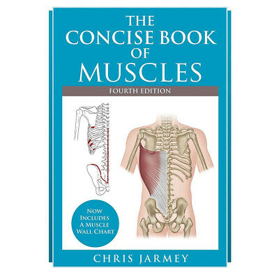 The Concise Book of Muscles By Chris Jarmey, New Paperback