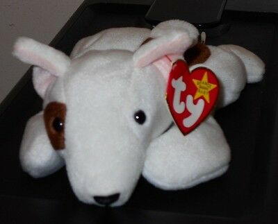NMT* Ty Beanie Baby ~ BUTCH the Bull Terrier Dog ~ MINT with NEAR MINT TAG