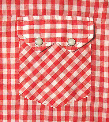 Vintage DEECEE Gingham Check/Checkered Western Shirt (80s) SAWTOOTH POCKETS! M