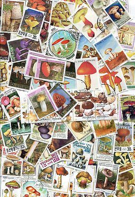 Exotic Collection Of 100 Mushroom Stamps - No Duplicates - Very Colorful!