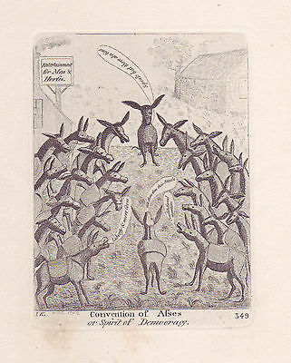 JOHN KAY Original Antique Etching. Convention of Asses, 1792