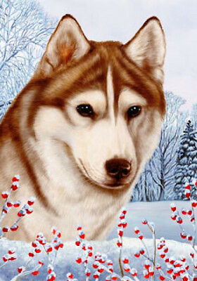 Large Indoor/Outdoor Winter Flag - Red & White Siberian Husky 15230