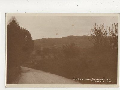 The Gog From Horsham Road Petworth Sussex Vintage RP Postcard