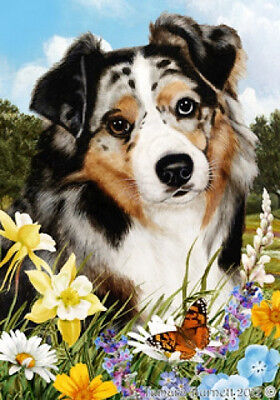 Garden Indoor/Outdoor Summer Flag - Blue Merle Australian Shepherd 180591