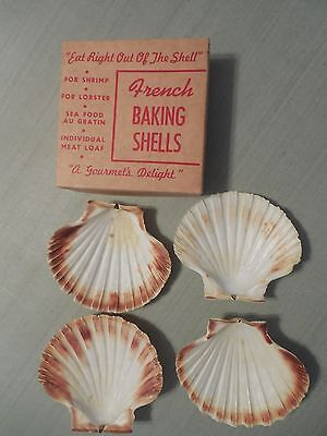 VINTAGE  BAKING SHELLS SET OF 4 IN BOX Shrimp Oysters eat in shell!